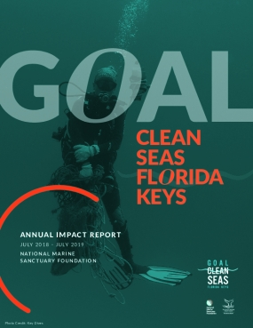 Goal: Clean Seas Florida Keys